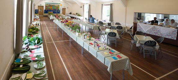 horticultural-show-2017-01