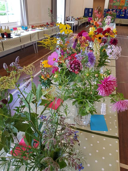 horticultural-show-2017-15
