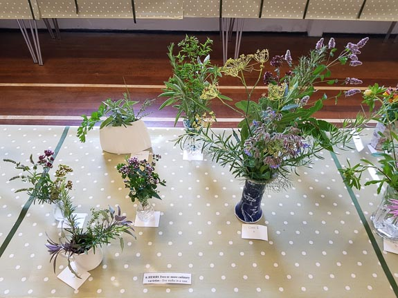 horticultural-show-2017-16