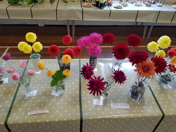 horticultural-show-2017-18