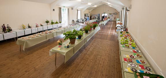 horticultural-show-2017-02