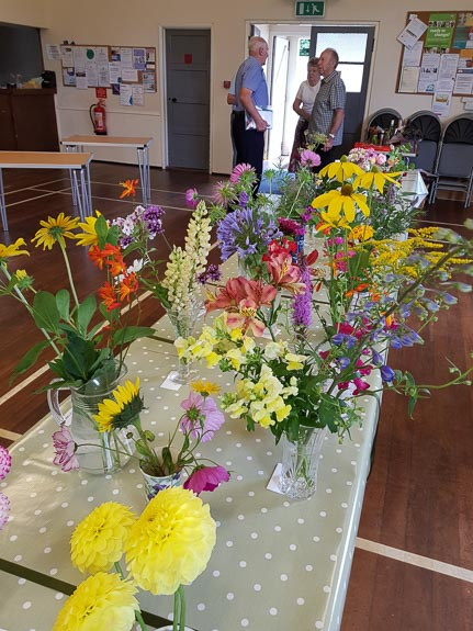 horticultural-show-2017-20