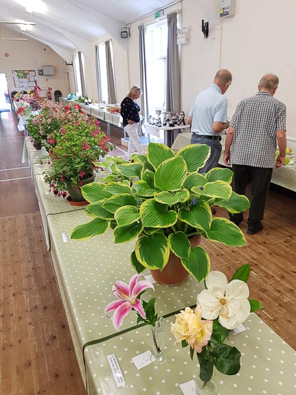 horticultural-show-2017-21