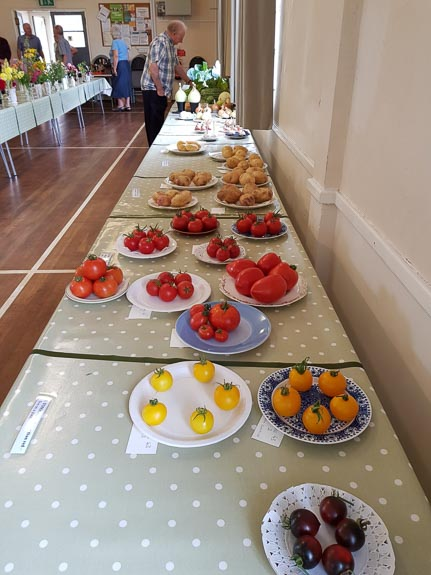 horticultural-show-2017-29