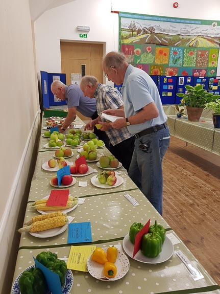 horticultural-show-2017-30