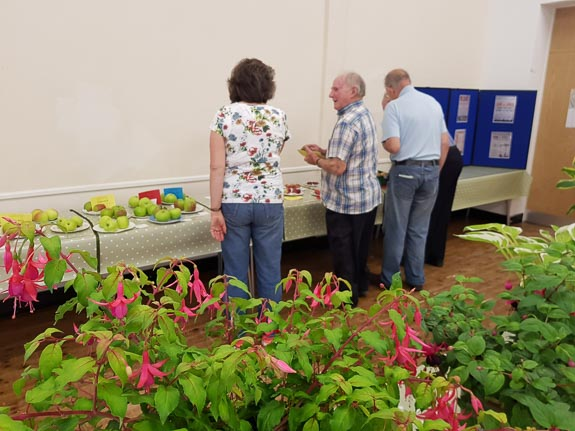 horticultural-show-2017-31