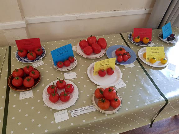 horticultural-show-2017-35