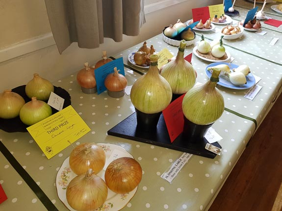 horticultural-show-2017-38