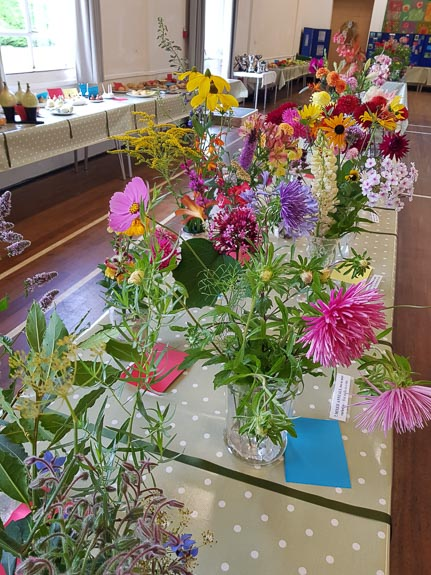 horticultural-show-2017-44