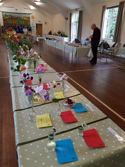 horticultural-show-2017-46