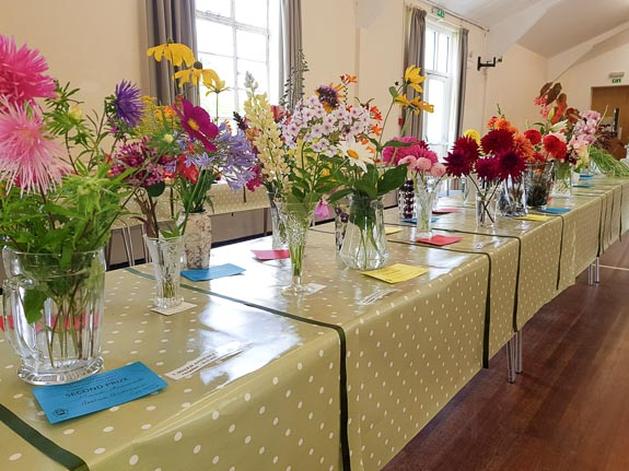 horticultural-show-2017-47