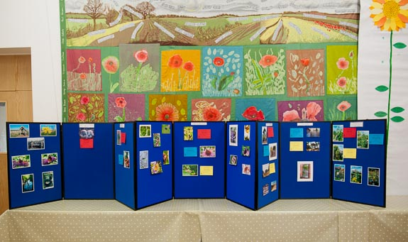 horticultural-show-2017-49