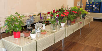 horticultural-show-flower-table