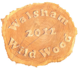 new wildwood sign carved from tree trunk