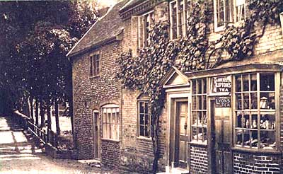 Sepia tinted photograph of the village store in The Street on the corner of Coach Road. It also has a bow window and an advertisement for Liptons Tea.