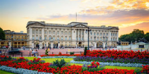 image of buckingham palace from the end of pall mall with brightly coloured planting in the beds in foreground