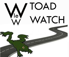 Walsham-le-Willows Toad Watch Logo