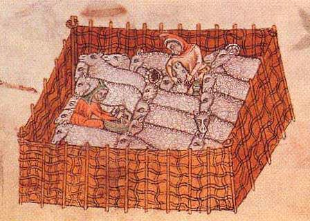 Colour illustration, drawn from above but at an angle so that the internal sides are also seen, a wicker pen containing a dozen or more sheep and two people dressed in robes including some sort of draping hat, one possibly milking the sheep and the other shearing. One of the sheep is a ram.