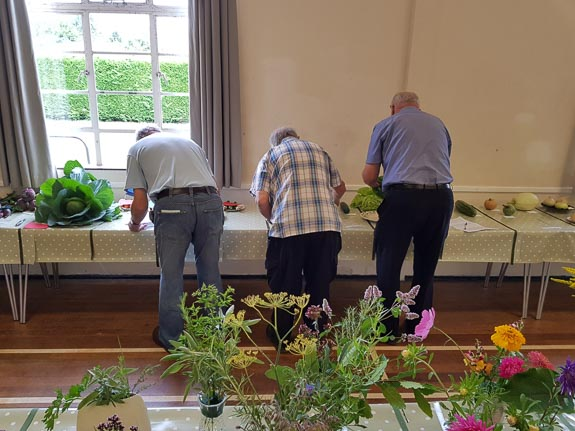 Horticultural Show 2017