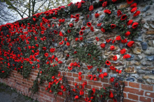Knitted poppies affixed to a fine net interspersed with some artificial leaf much like camouflage netting and draped from the top of the tall flint and brick wall to the side of St. Mary's church.
